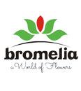 bromelia-logo