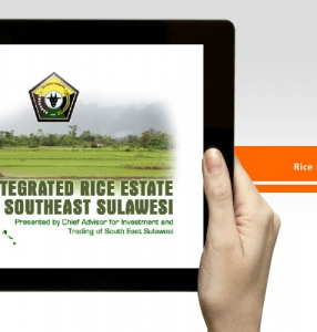 Rice Estate – Animation Presentation Design