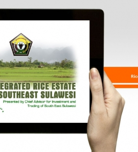 Rice Estate Sultra – Flash Animation Presentation