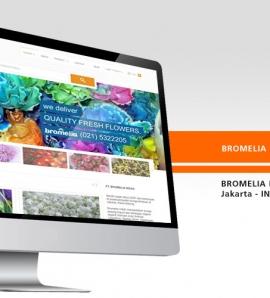 Bromelia Flowers